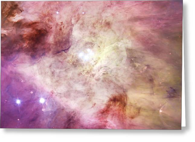 Orion Nebula And Large Stars Greeting Card by Jennifer Rondinelli Reilly - Fine Art Photography