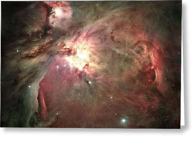 Space Hollywood - Orion Nebula Greeting Card by Marianna Mills