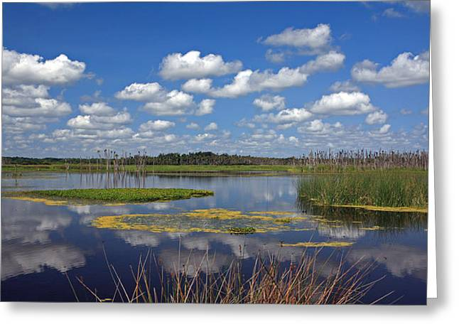 Orlando Wetlands Park Cloudscape 4 Greeting Card by Mike Reid