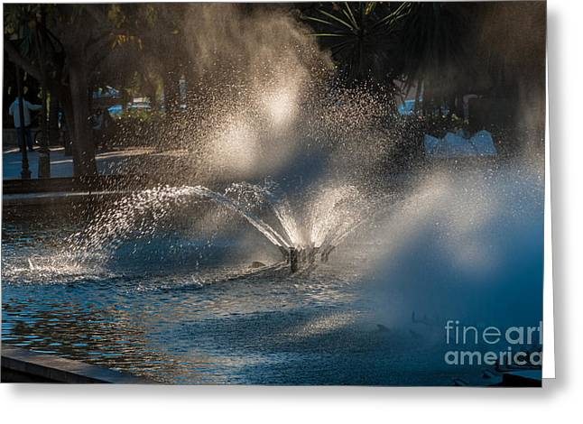 Ornamental Fountain In A Pond With Blurred Light Reflections Greeting Card by Hannelore Baron