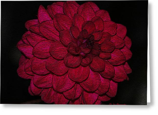 Ornate Red Dahlia Greeting Card