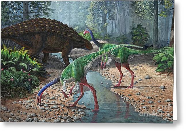 Ornithomimus Swallowing Stones Greeting Card