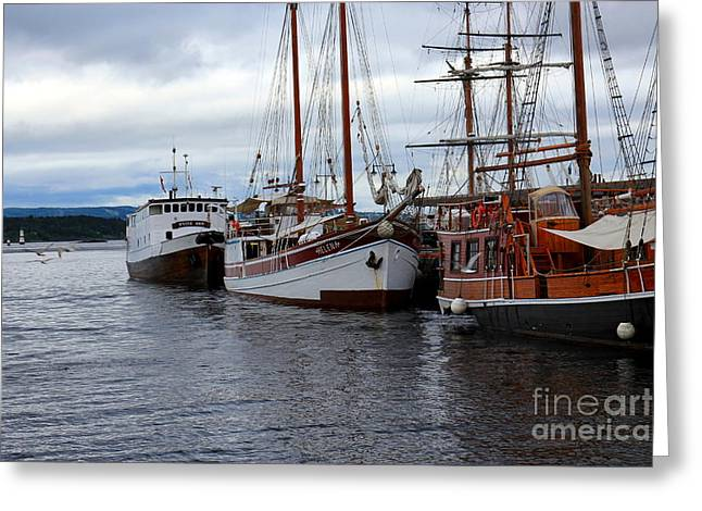 Oslo Port Norway Greeting Card