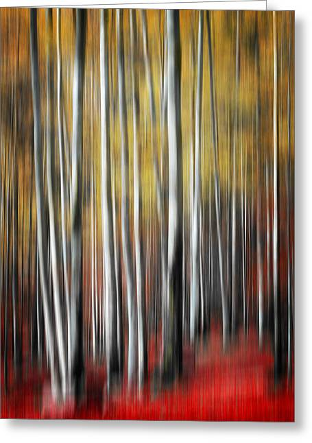 Greeting Card featuring the photograph Osmosis by Philippe Sainte-Laudy