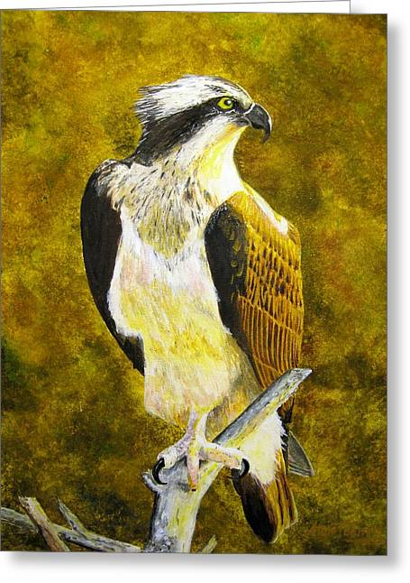 Greeting Card featuring the painting Osprey Profile by Stan Tenney