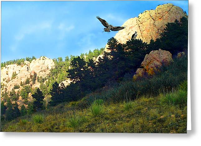 Osprey Greeting Card by Ric Soulen