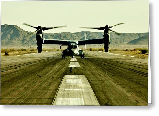 Osprey Takeoff Greeting Card