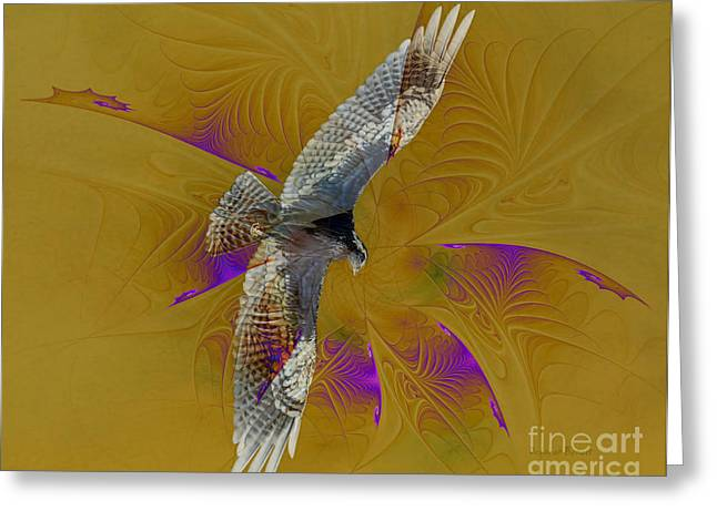 Osprey Wild Greeting Card by Deborah Benoit