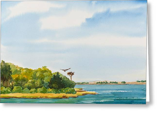 Ospreys On The Vineyard Watercolor Painting Greeting Card by Michelle Wiarda