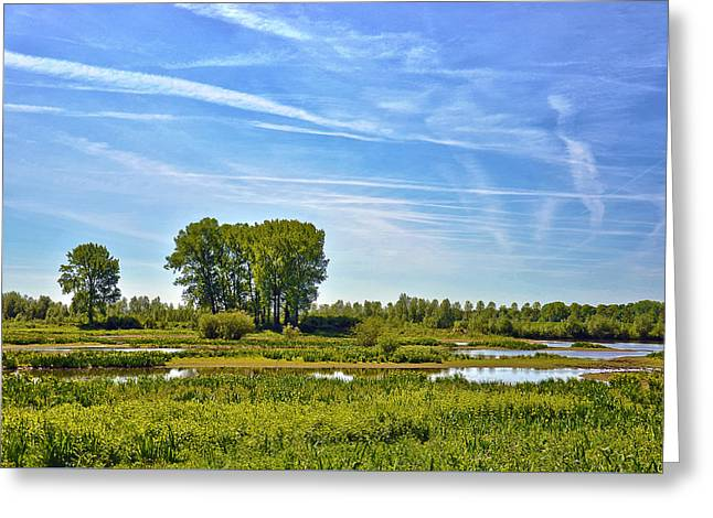 Ossenwaard Near Deventer Greeting Card