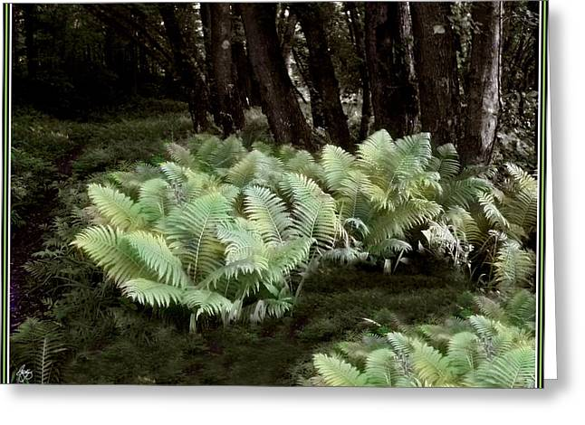 Ostrich Ferns In Langdon Woods Greeting Card by Wayne King