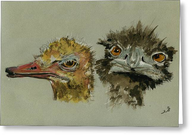 Ostrichs Head Study Greeting Card by Juan  Bosco