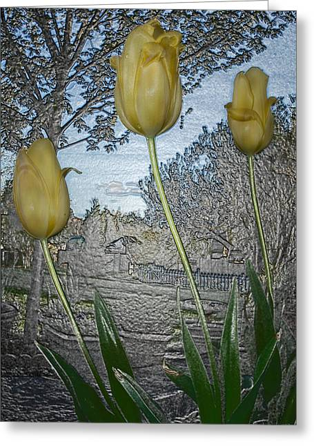 Other World Tulips Greeting Card by Mick Anderson