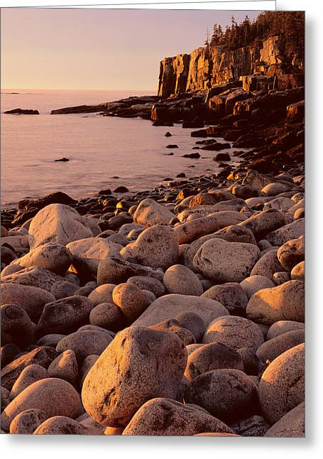 Otter Cliffs - Boulder Beach Greeting Card