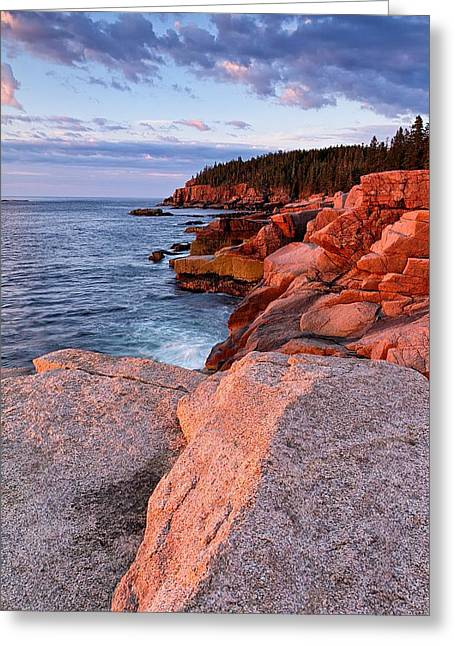 Otter Cliffs At First Light Greeting Card