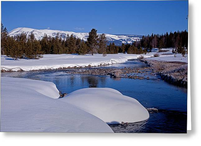 Greeting Card featuring the photograph Otter Creek by Jack Bell