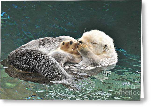 Greeting Card featuring the photograph Otter Dreams by Mindy Bench