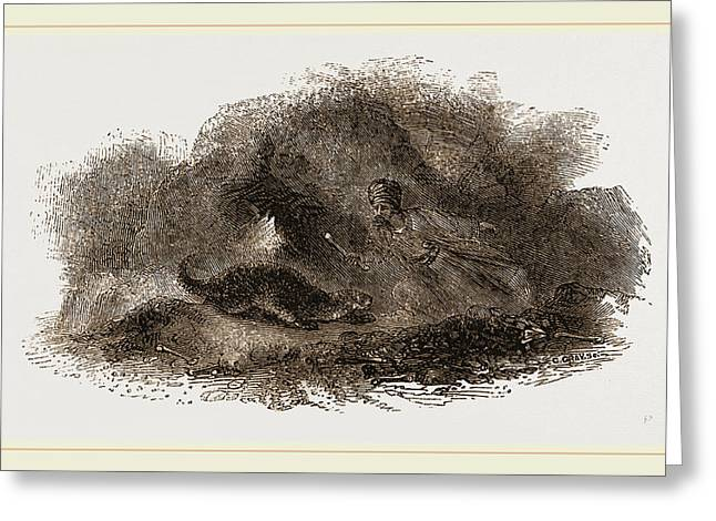 Otter In Cave Greeting Card