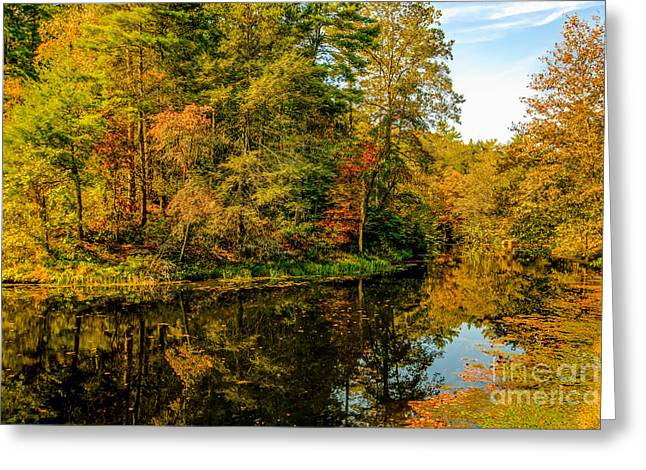 Otter Lake In The Fall Greeting Card by Mark East