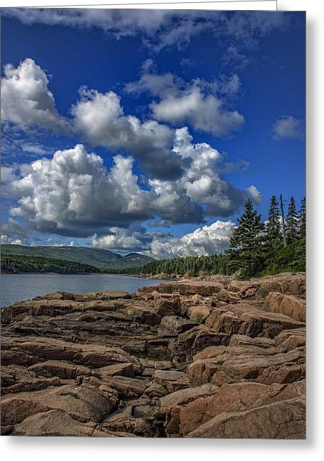 Otter Point Afternoon Greeting Card by Rick Berk