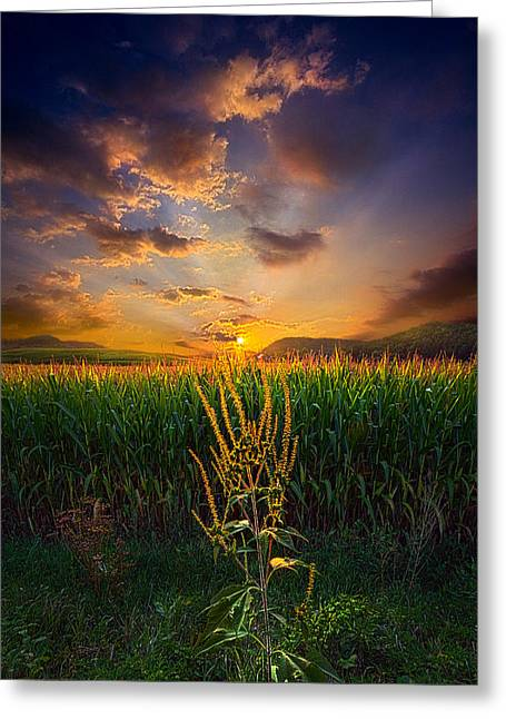 Our Time Together Greeting Card by Phil Koch
