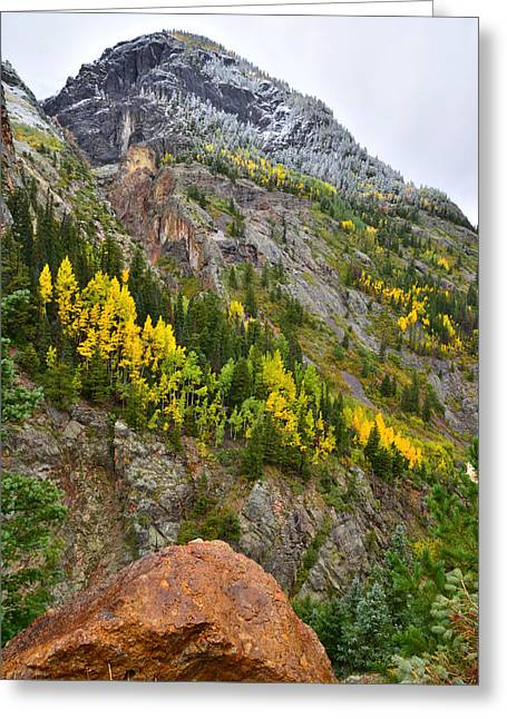 Ouray Canyon Fall Color Greeting Card
