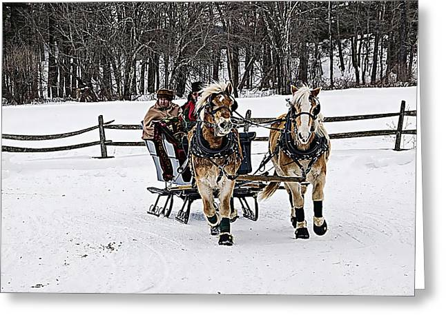 Out For A Ride Greeting Card by Douglas Miller
