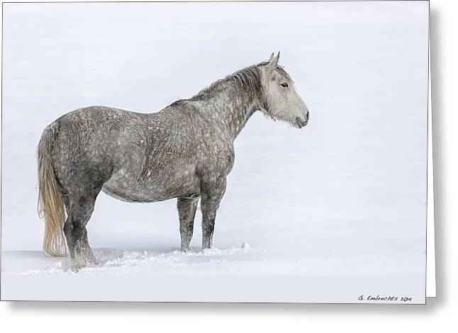Out In The Distance Lg Greeting Card by Gigi Embrechts