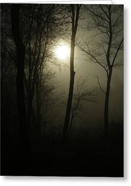 Out Of The Darkness Comes Light Greeting Card by Karol Livote