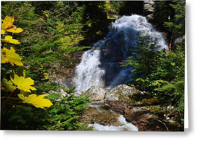 Out Of The Mt Waterfall  Greeting Card by Randy Giesbrecht