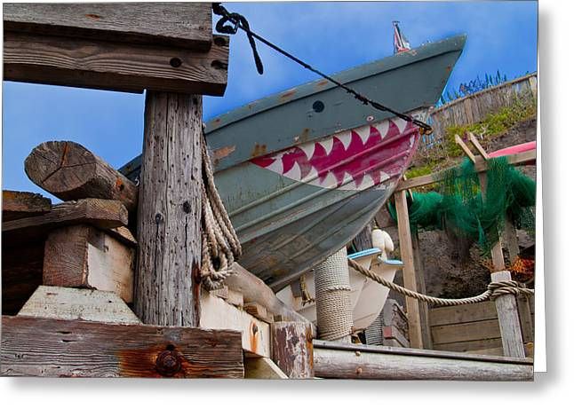 Out Of The Water - There's A Shark Greeting Card