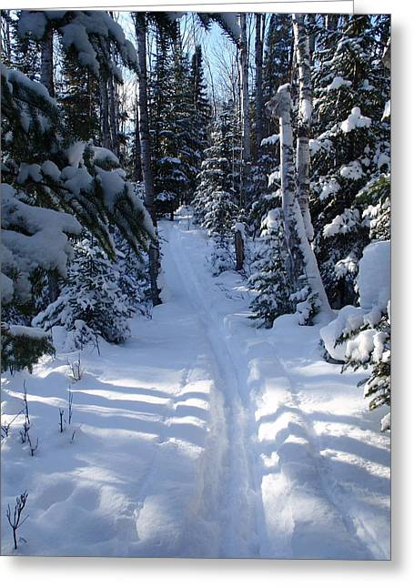 Greeting Card featuring the photograph Out On The Trail by Sandra Updyke