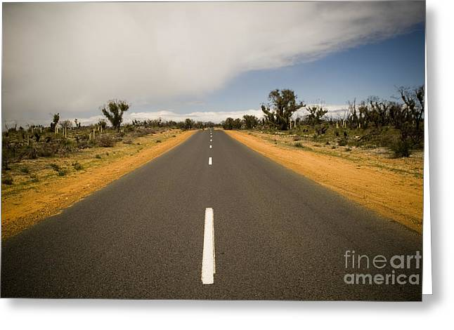 Outback Road Greeting Card by Tim Hester