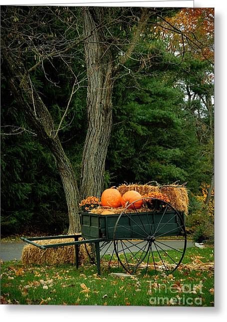 Outdoor Fall Halloween Decorations Greeting Card