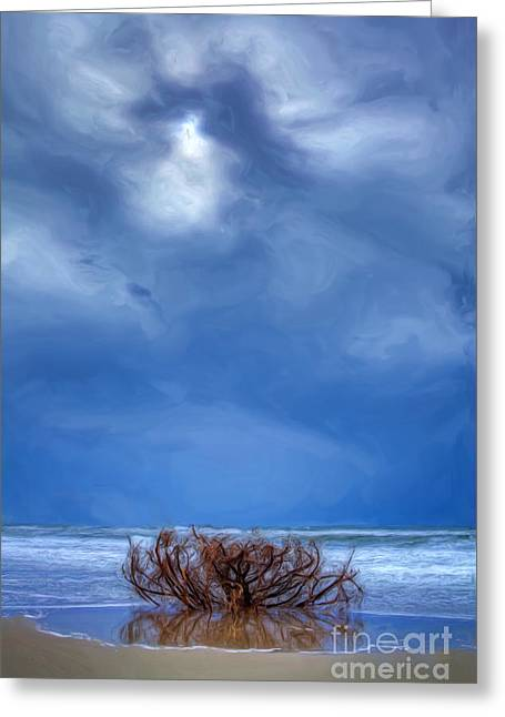 Outer Banks - Driftwood Bush On Beach In Surf II Greeting Card by Dan Carmichael