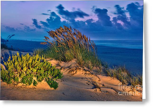 Outer Banks - Ocracoke Sand Dunes Oats Sunrise Greeting Card by Dan Carmichael