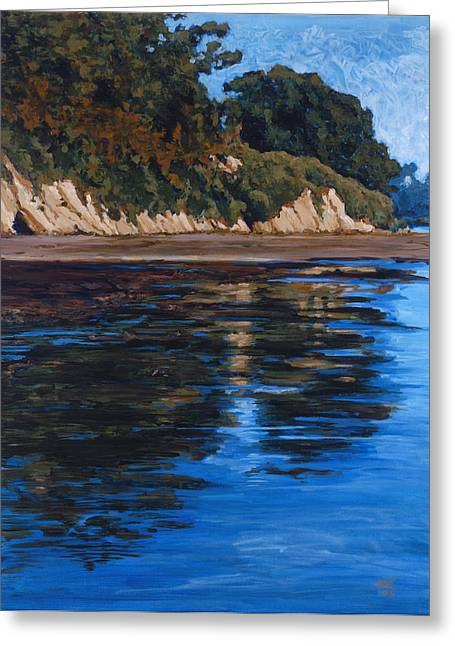 Outflow-goleta Slough Greeting Card