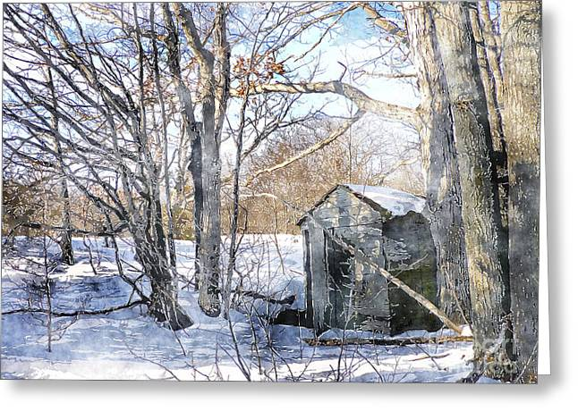Outhouse In Winter Greeting Card by Claire Bull