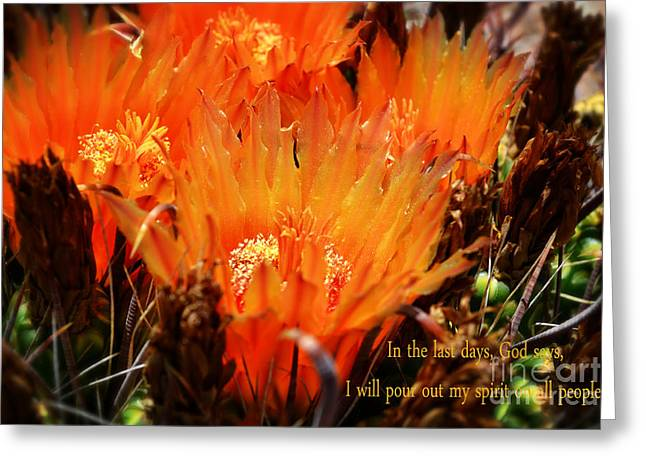 Outpouring Of Glory Greeting Card by Beverly Guilliams