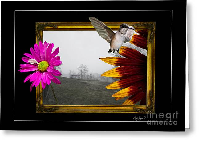 Outside The Box Greeting Card by Cris Hayes