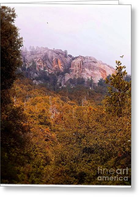 Idyllwild Greeting Cards - Overcast At Suicide Rock - Idyllwild Greeting Card by Glenn McCarthy Art and Photography