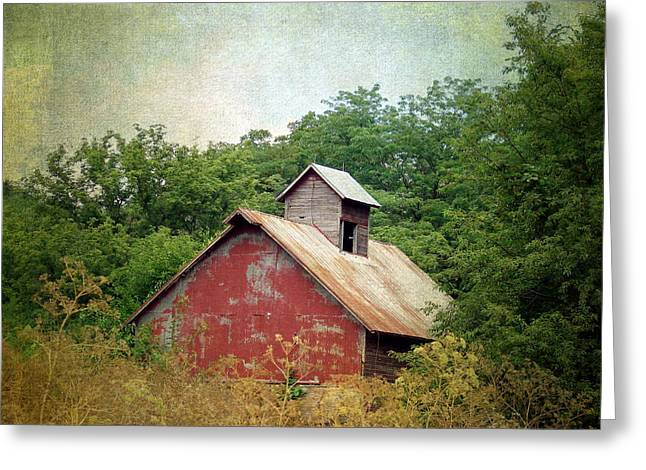Overgrown And Abandoned Greeting Card by Cassie Peters