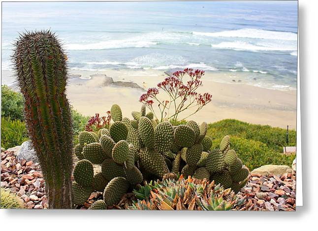 Overlooking San Elijo Beach Greeting Card