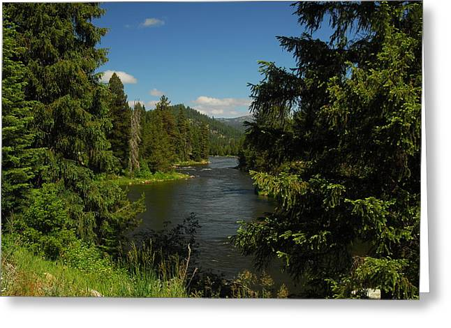 Overlooking The Lochsa River In Idaho Greeting Card by Larry Moloney