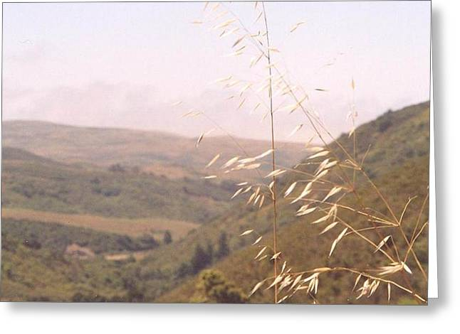 Greeting Card featuring the photograph Overlooking The Valley by Cynthia Marcopulos