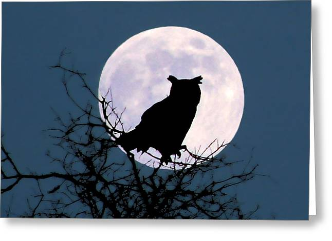 Owl And Blue Moon Greeting Card