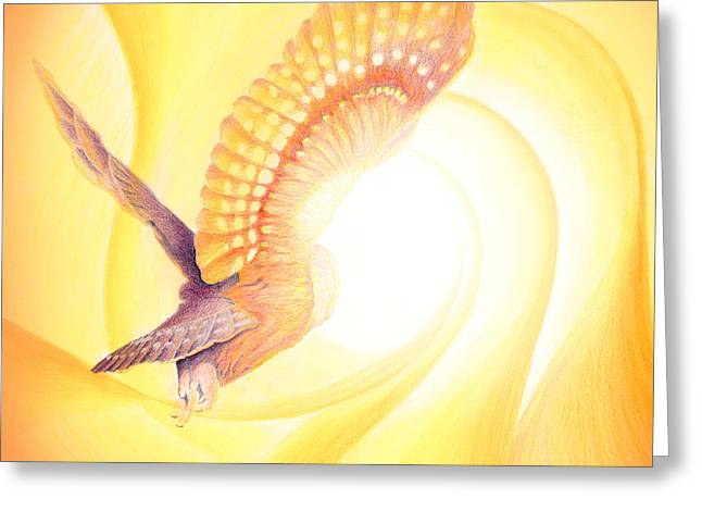 Owl Going Into The Light Greeting Card