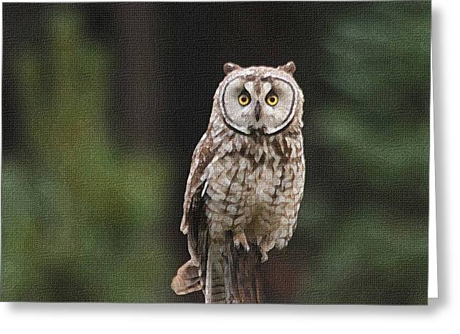 Greeting Card featuring the photograph Owl In The Forest Visits by Tom Janca