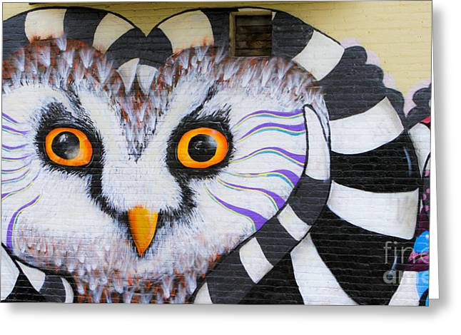 Greeting Card featuring the photograph Owl Mural by Ricky L Jones