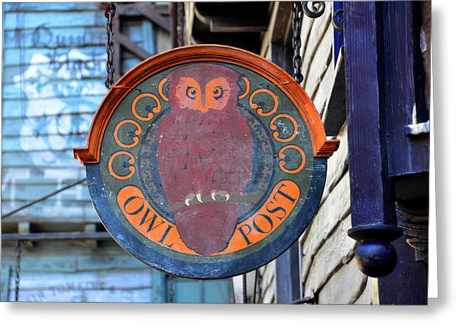 Owl Post  Greeting Card by David Lee Thompson